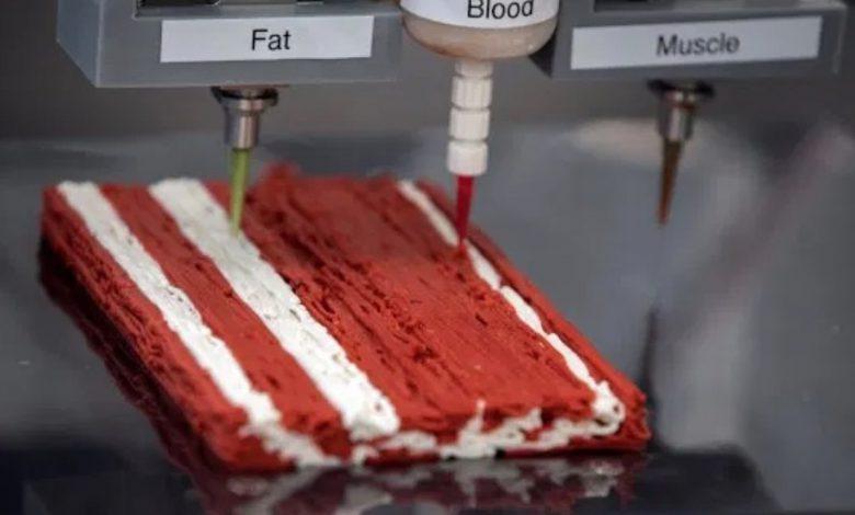 تولید استیک های گیاهی با استفاده از فناوری چاپ سه بعدی