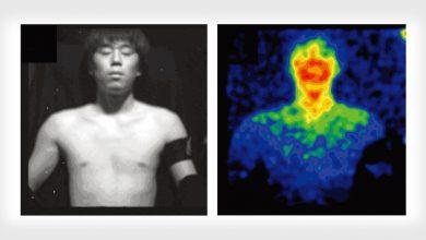 Photo of خاصیت بیولومینسانس امکان عکاسی در تاریکی از بدن انسان را فراهم می کند