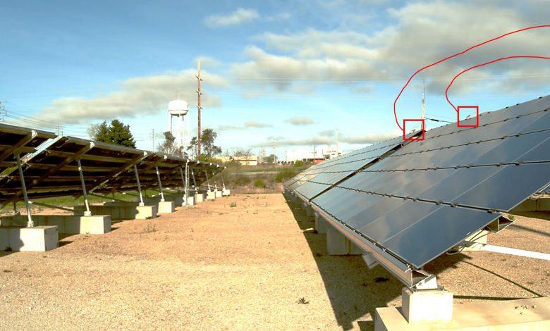 استفاده از هوش مصنوعی برای محافظت از پرندگان در برابر پنل های خورشیدی