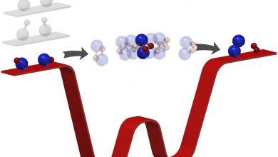 Photo of شبیه سازی کوانتومی واکنش شیمیایی توسط محققان گوگل