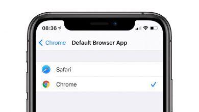 Photo of نخستین باگ iOS 14  باعث برگشت تنظیمات اپلیکیشن های پیش فرض خواهد شد
