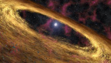 Photo of ستاره شناسان موفق به کشف قویترین میدان مغناطیسی جهان شدند