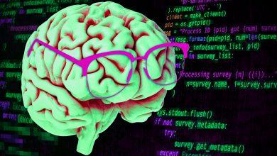 Photo of فعالیت خاص مغزی در مغز برنامه نویسان حرفه ای چگونه است؟