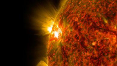 Photo of محققان موفق به مطالعه لایه های درونی خورشید با کمک امواج مغناطیسی شدند