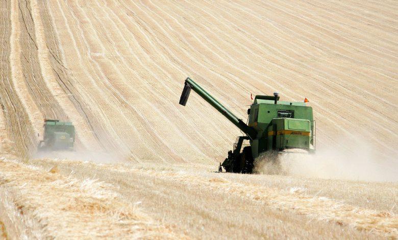دانشمندان چینی از کودهای ارگانیک برای افزایش باروری خاک استفاده کردند