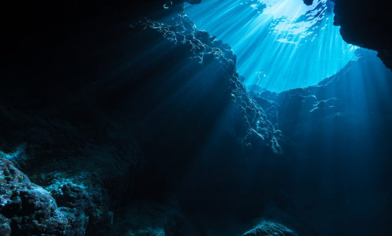 کشف یک میکروارگانیسم تک سلولی در اعماق اقیانوس با دمای بالاتر از نقطه جوش