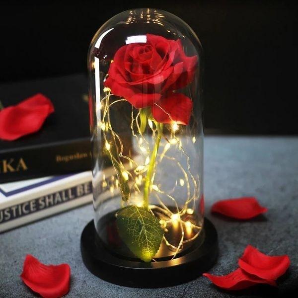 گل رز جاویدان 1
