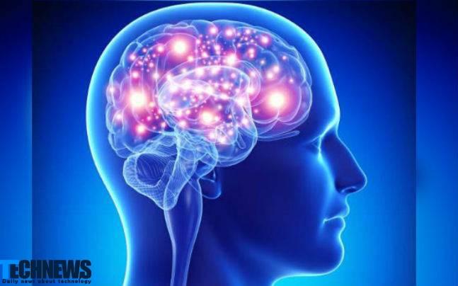 محققان به دنبال درک دقیق تری از روند ایجاد ترس در مغز انسان هستند
